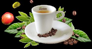 cafe-proqua