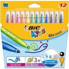 bic018
